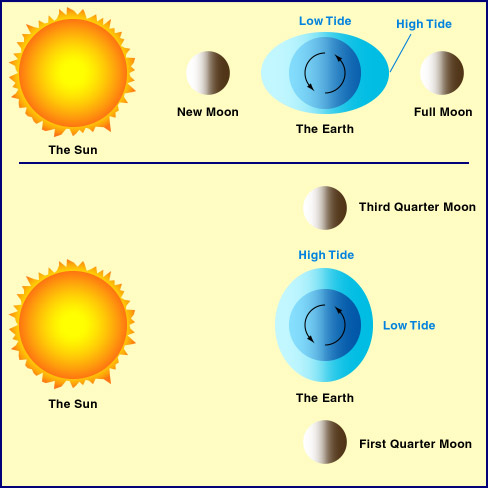Tides Sun Earth Moon System